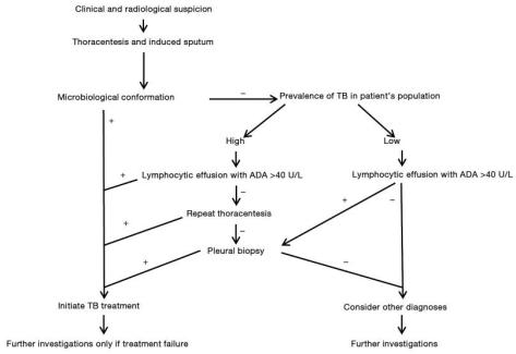 Tuberculous Pleural Effusion