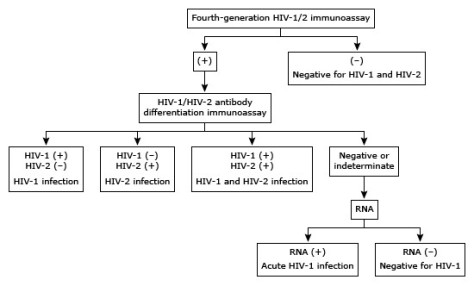 HIV algorithm