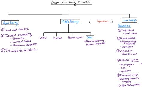 obstructivelungdiseaseschema_geha